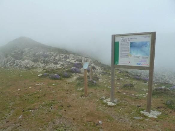 Llanadas con niebla